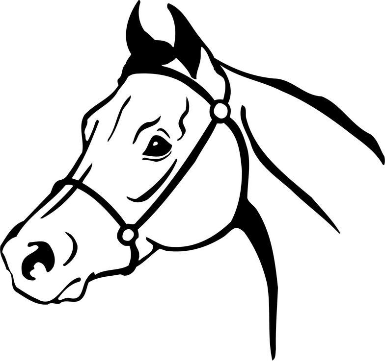 784x737 Horse Head Drawings Clip Art Head Clipart Race Horse