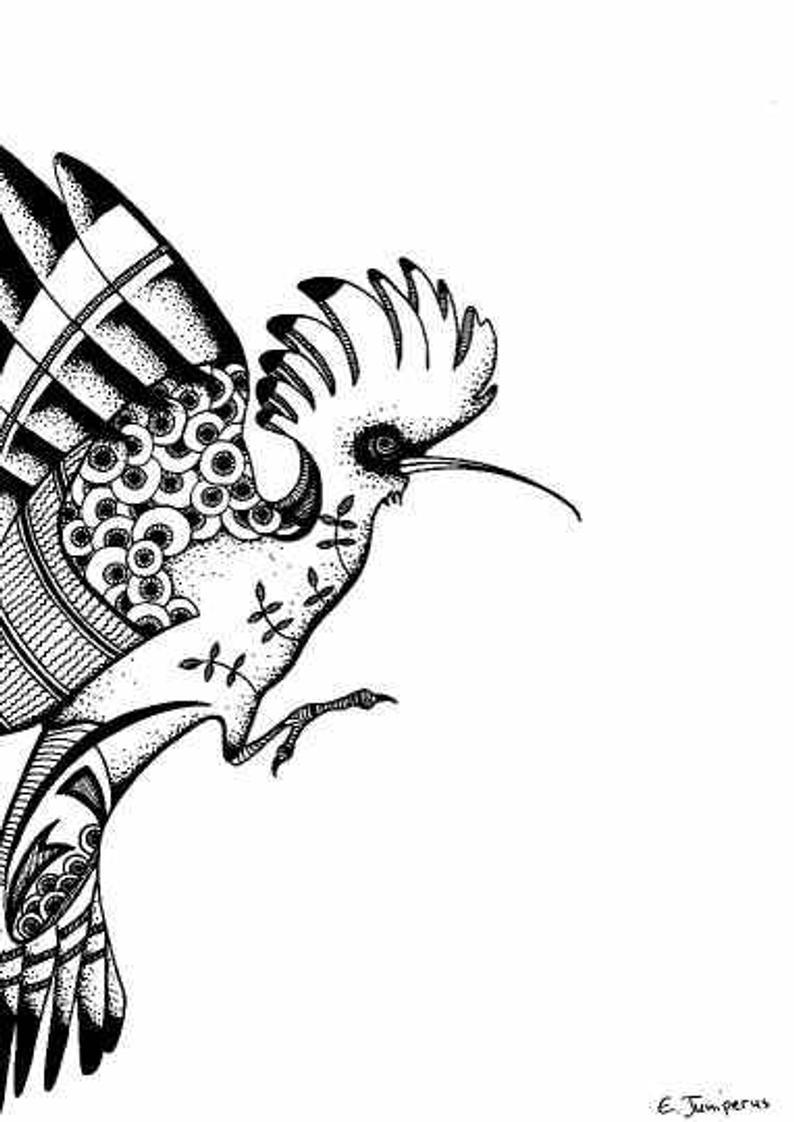 794x1122 Hoopoe Original Drawings Prints Balck And Whitebird Art Etsy