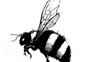 300x210 bumble bee drawing simple bumble bee drawing bee fabric etsy