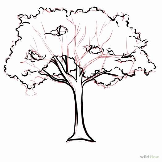 525x525 Fresh Of Clip Art Tree No Leaves