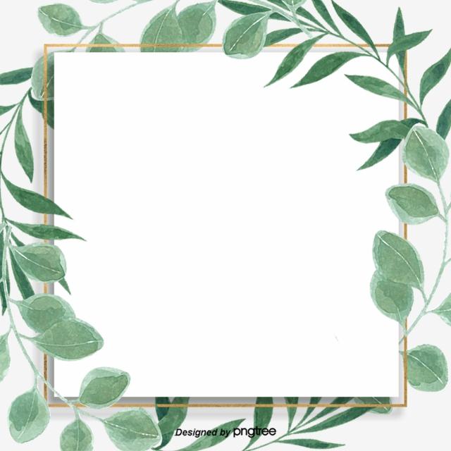 640x640 Green Little Refreshing Eucalyptus Leaf Border Background, Leaf