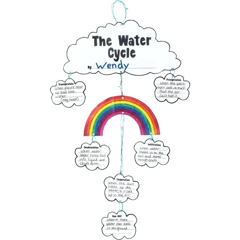 800x800 the water cycle in order water cycle water cycle ordering cards