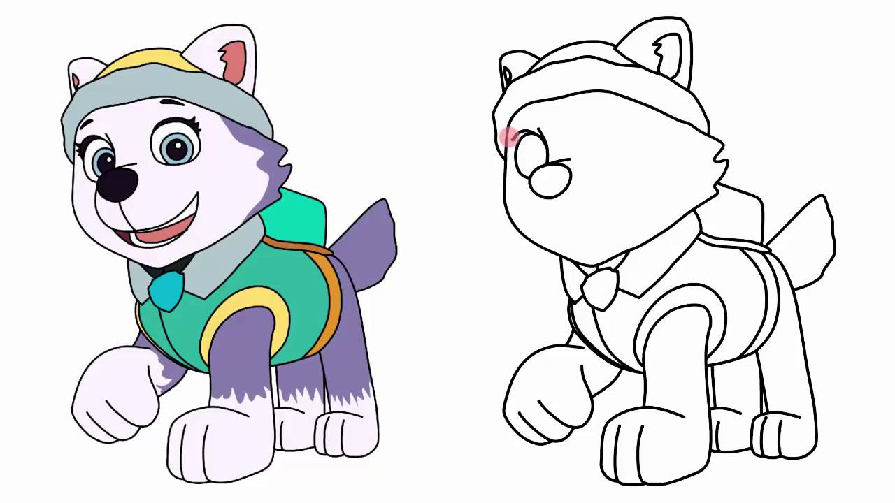 1280x720 How To Draw Everest From Paw Patrol Characters Step
