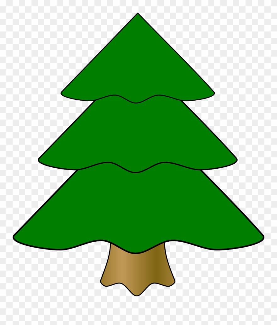 880x1033 Pine Tree Cartoon Buy Clip Art