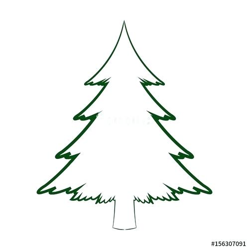 500x500 Pine Tree Drawing Download