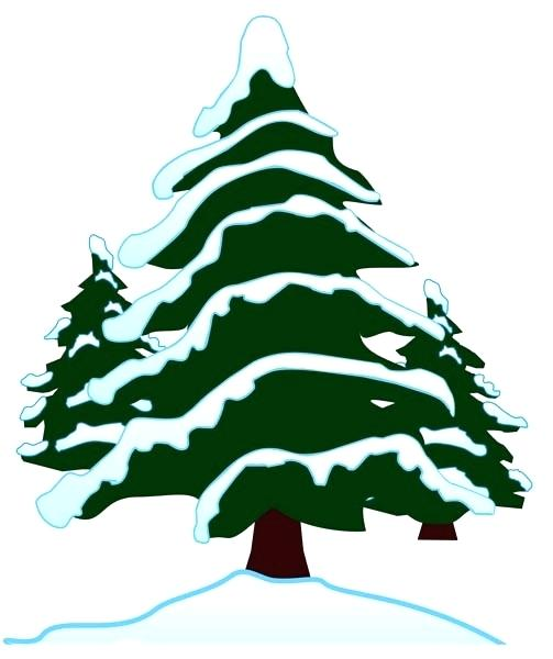 503x600 Snowy Tree Drawing Evergreen Trees In Snow Free Clip Art Snowy
