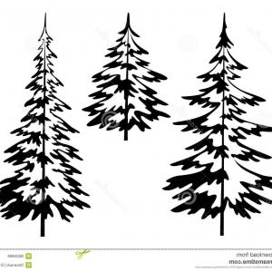 300x300 Evergreen Conifer Pine Tree Flat Stylized Line Art Vector Icon
