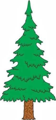 236x504 Evergreen Tree Clipart