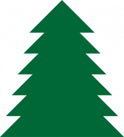 250x276 Pine Drawing Evergreen Tree, Picture