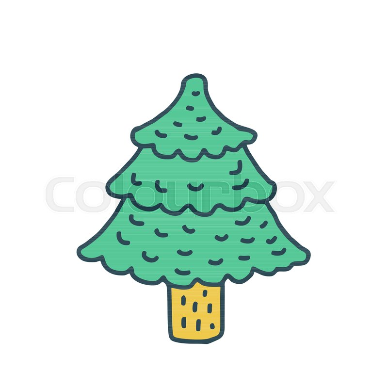 800x800 Christmas Tree Drawing Isolated Fir Stock Vector Colourbox