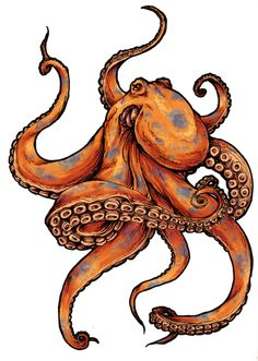 Evil Octopus Drawing