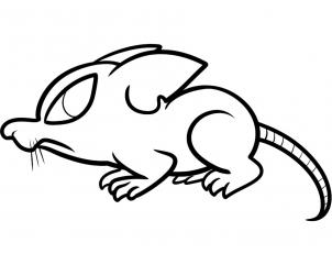 302x231 rat drawing rat drawing