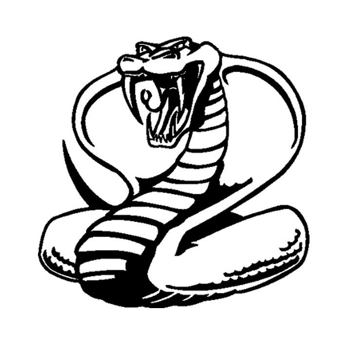 Evil Snake Drawing