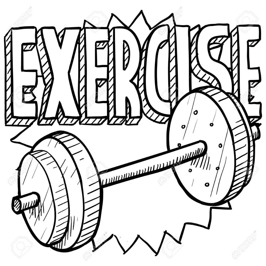 900x900 Gym Drawing Healthy Exercise For Free Download