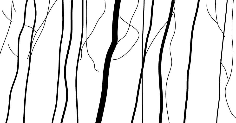 980x513 expressive lines landscape pictures and ideas on pro landscape