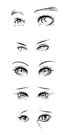 Eye Anatomy Drawing