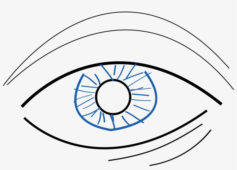 820x587 Eye Drawing Png, Png Collections