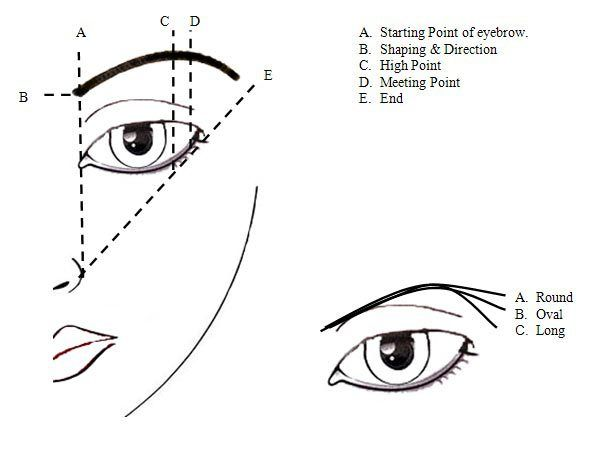 595x456 The Golden Rule Of A Good Brow Game Is Map Out Your Brows