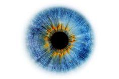 Eye Iris Drawing