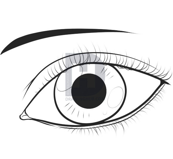 590x541 How To Draw An Easy Eye, Step