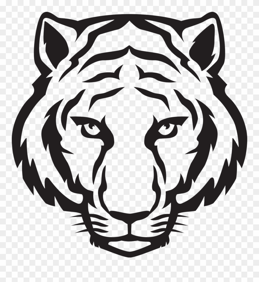 880x955 Tiger Face Png