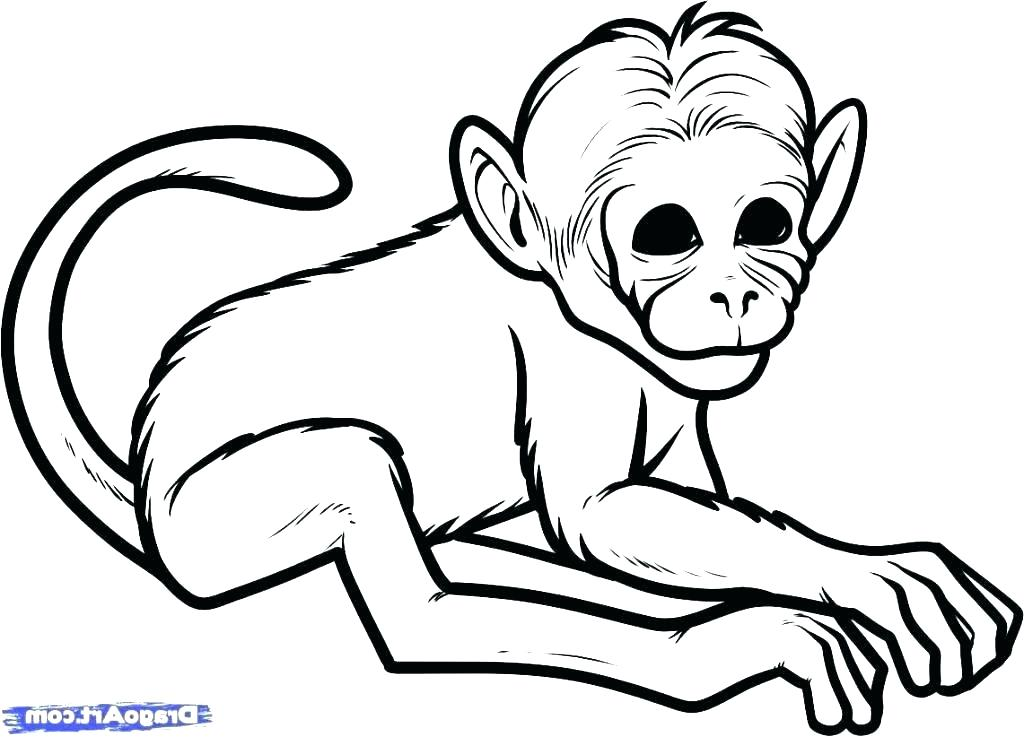 1024x737 Easy Monkey Drawings Beating An Animal Black And White Collection