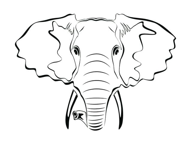 640x480 Elephant Face Outline Elephant Black And White Drawing At Baby