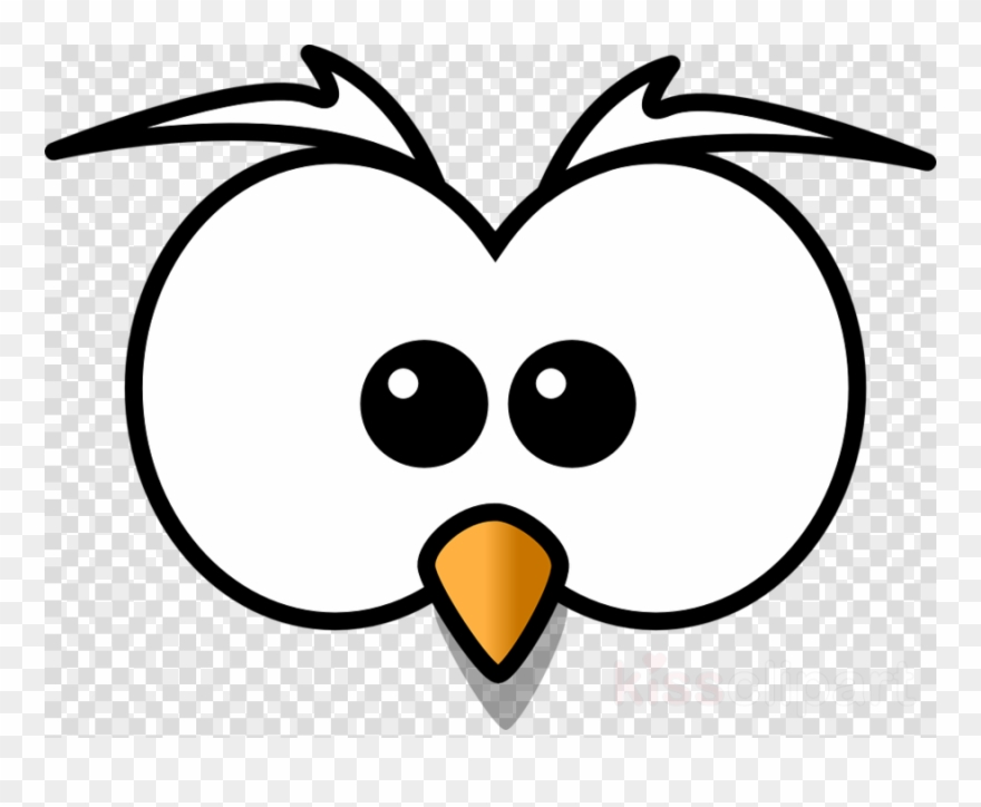 880x724 Cartoon Owl Face Clipart Owl Drawing Clip Art