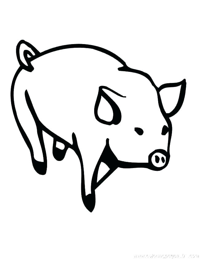 650x840 Pig Face Drawing Cartoon Pig Drawing How To Draw A Cute Little