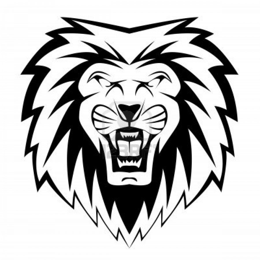 900x900 Lion Face Drawing Clipart