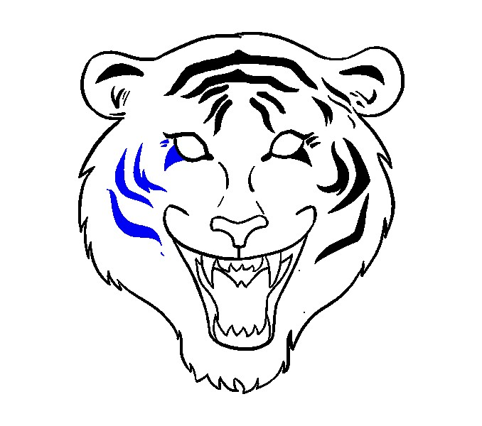 678x600 Tiger Face Drawing