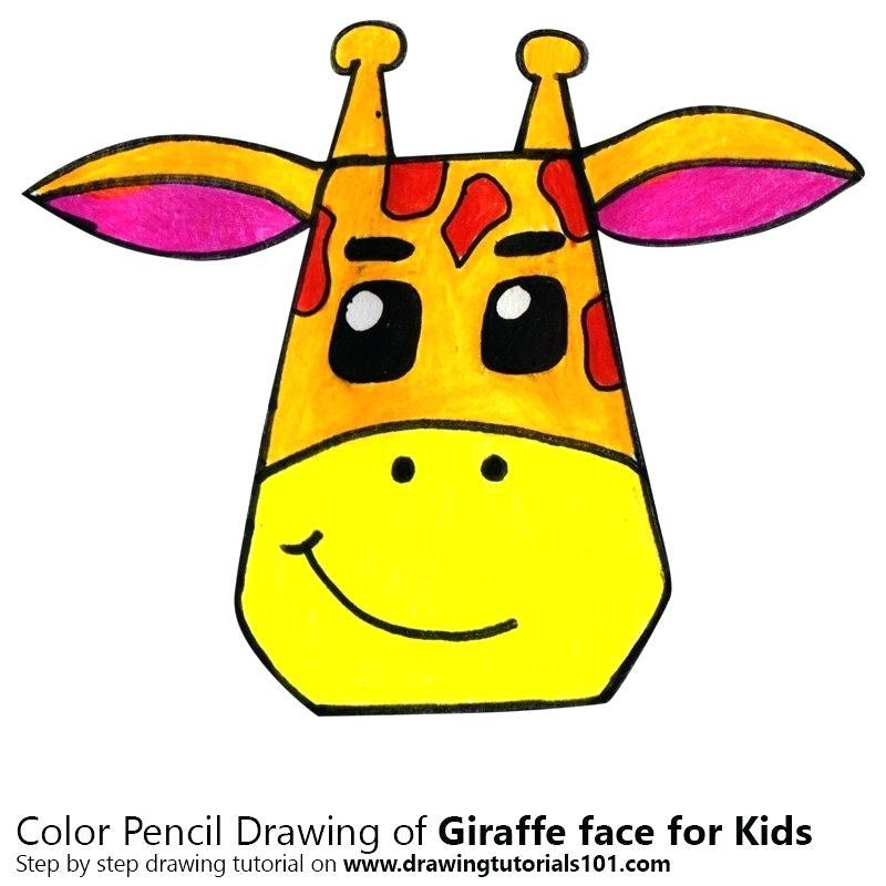 800x800 Giraffe Drawing Step