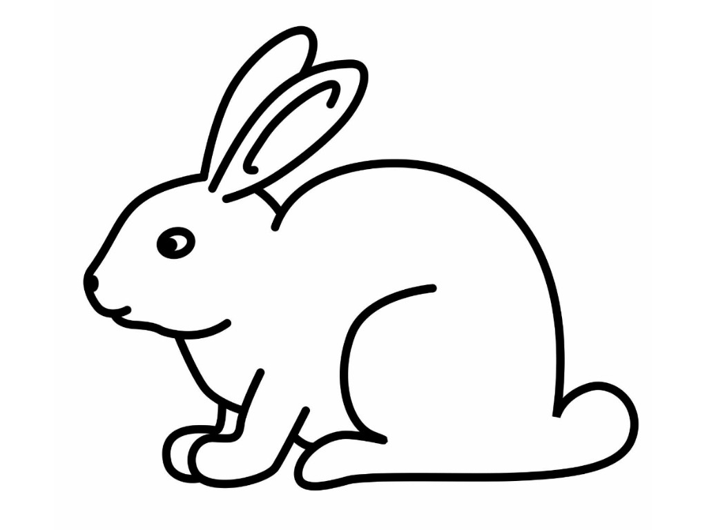 1024x768 Bunny Rabbit Drawing Easy Step