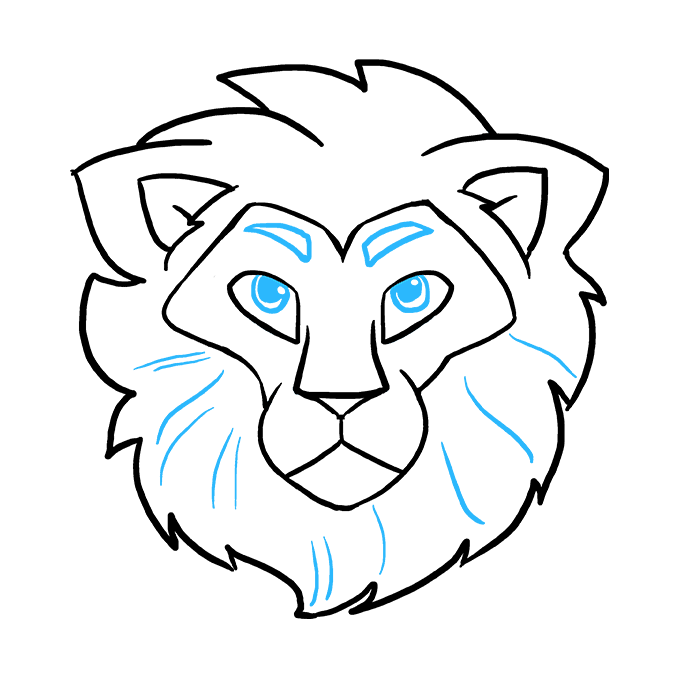 680x678 Huge Collection Of 'lion Face Drawing Step