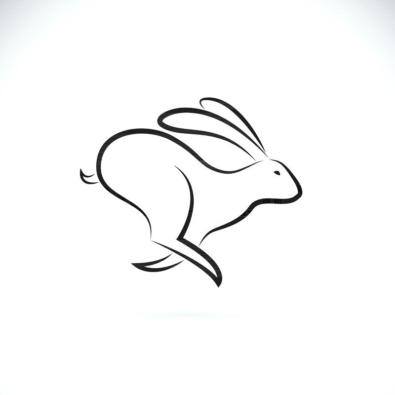 800x800 Easy Drawing Of A Bunny A Draw Bunny Easy Easy Way To Draw Bunny
