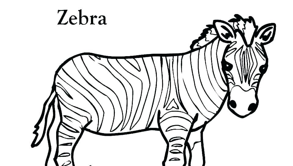 960x544 Easy Drawings Of Zebras Download Draw Easy Zebra Face Hoteles