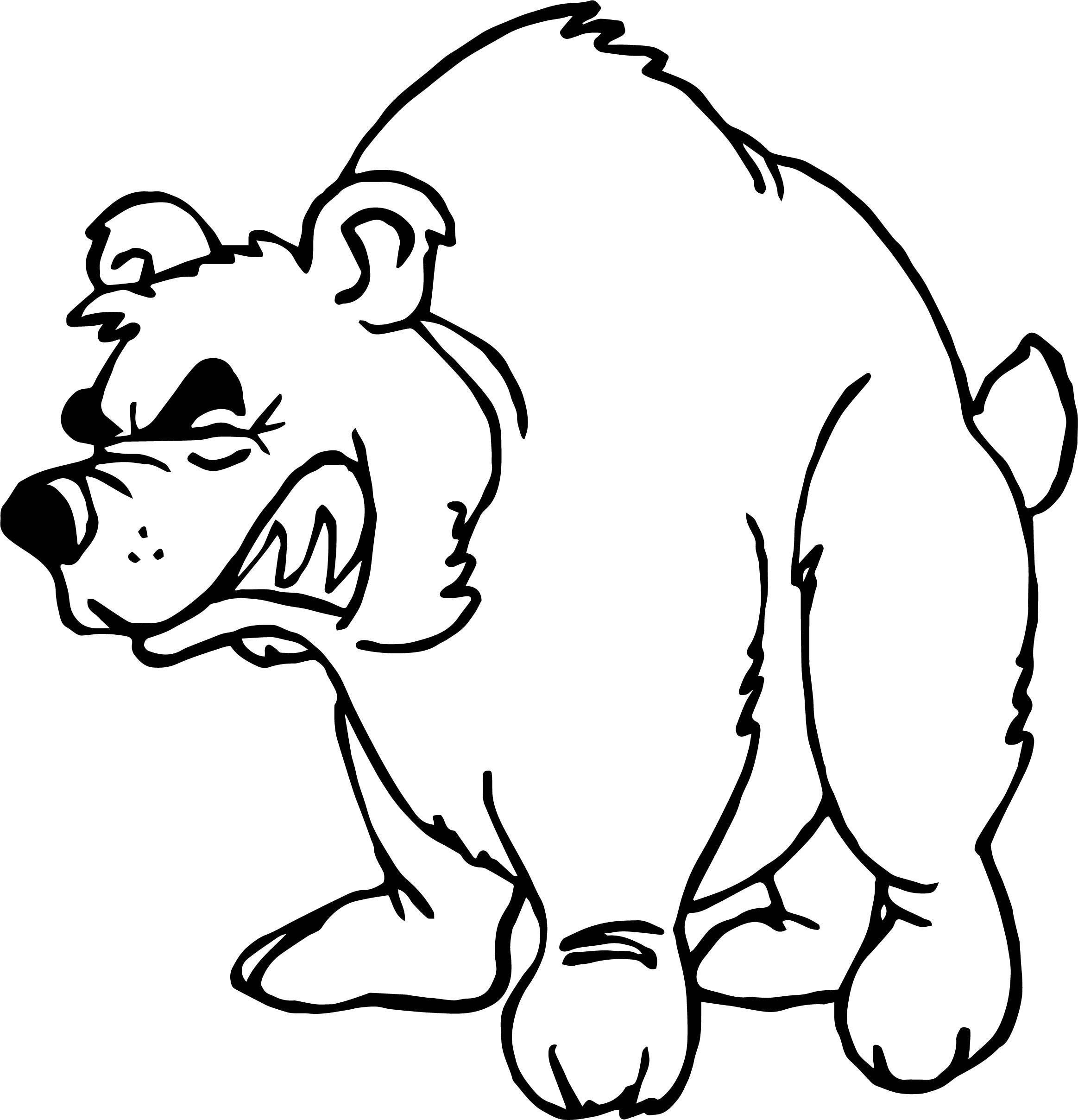 2327x2417 Polar Bear Face Easy Drawing Panda Brown Angry Baby Pencil