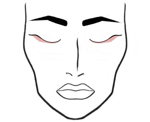 490x400 Blog Archive Face Charts