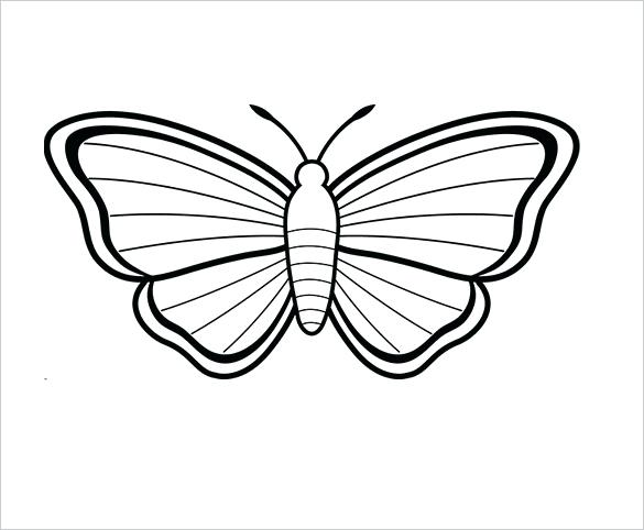 photograph relating to Free Printable Fairy Wings titled Fairy Wings Drawing Free of charge down load suitable Fairy Wings Drawing