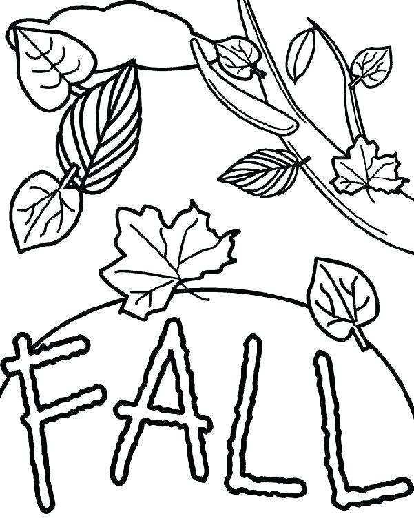 601x762 fall leaf drawing fall leaves clip art black and white simple fall