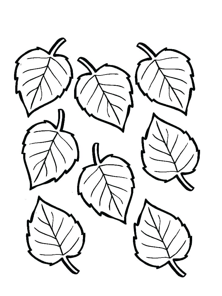 728x969 coloring pages autumn leaves autumn leaves coloring pages