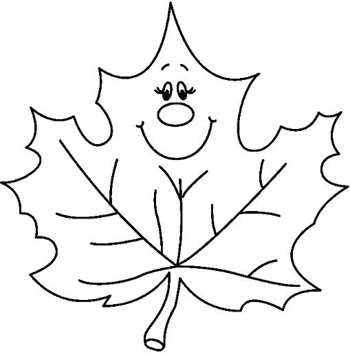 509x512 fall leaf drawing at com free for personal use pictures fall leaf