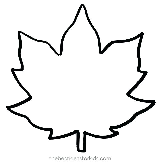 650x650 fall leaf outline how to draw fall leaves fall leaves drawing fall