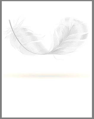 317x401 Yoga Props Yoga Mats Falling White Feather