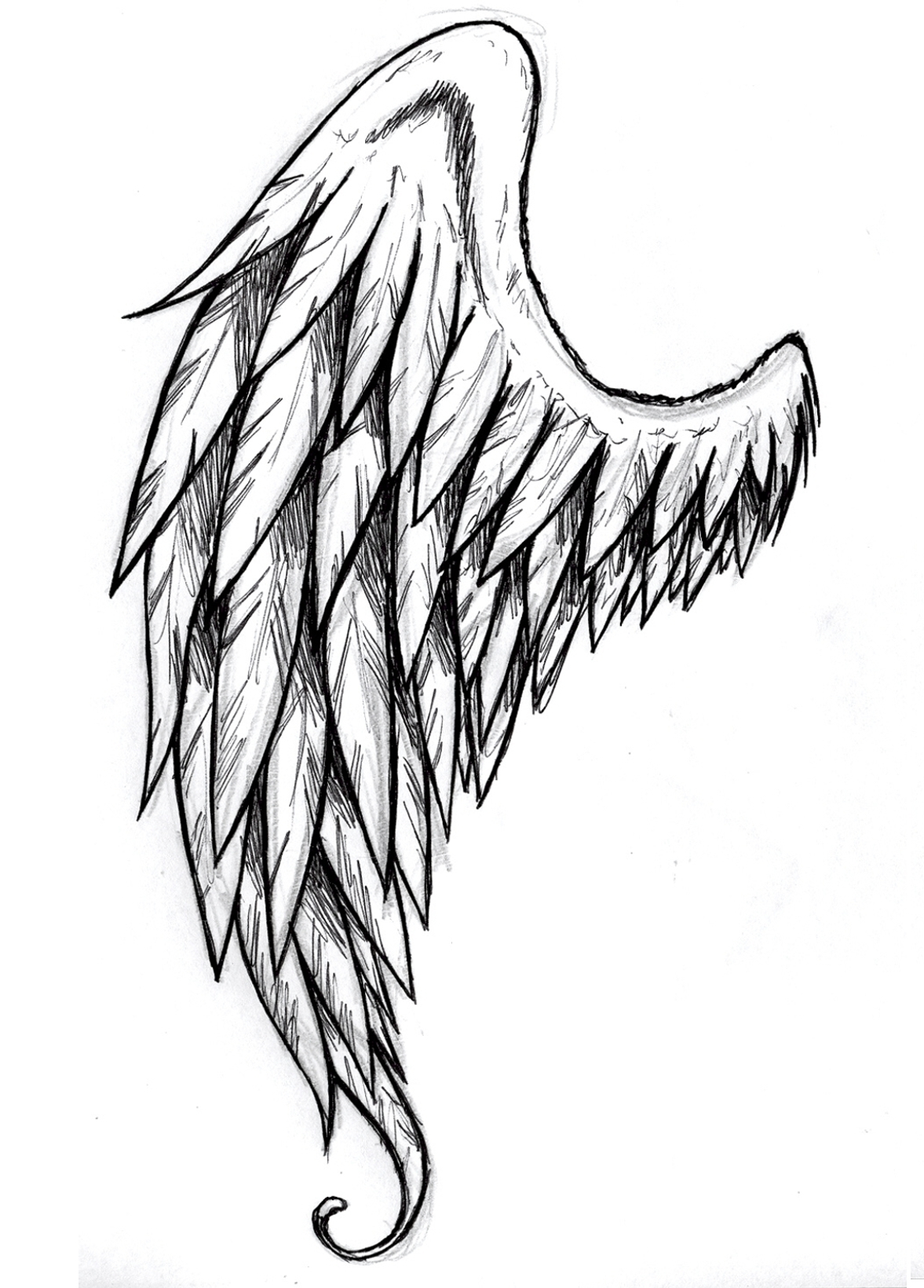 1177x1640 Tattoo With One Maybe Two Tattered Feather Angel Wings