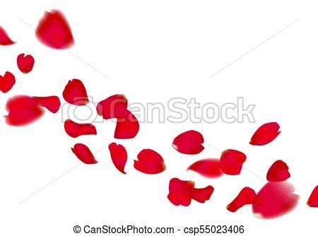 450x334 Red Sakura Or Rose Falling Petals On Transparent Background