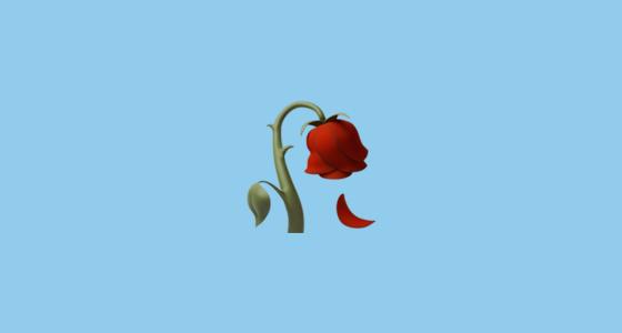 560x300 Wilted Flower Emoji