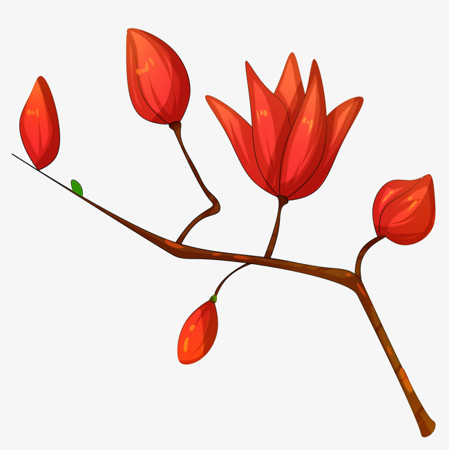 650x651 Antique Chinese Style Autumn White Magnolia Flower Petals Red