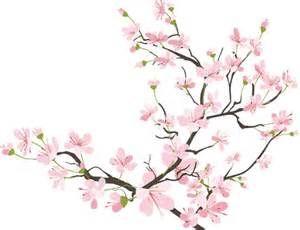 300x230 Cherry Blossom Petals Falling Gif Imagescherry Blossoms Gif My