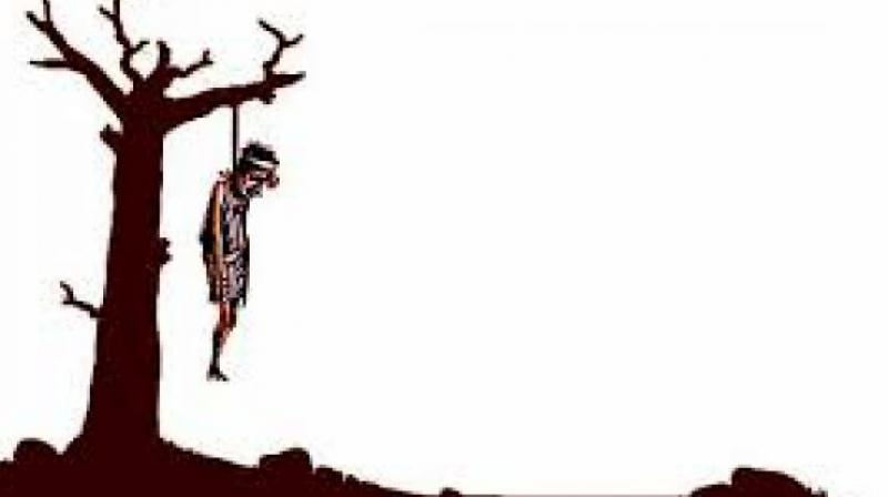 800x448 maharashtra farmer hangs self from tree, suicide in three days